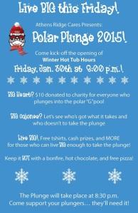 Polar Plunge flyer